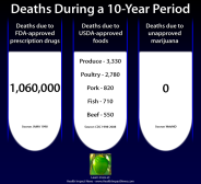 illegal-marijuana-deaths-compared